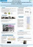 Determination of a novel parvovirus pathogen associated with massive mortality in adult tilapia