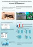 Growth performance and survival rates of Nile tilapia (Oreochromis niloticus L.) reared on diets containing Black soldier fly (Hermetia illucens L.) larvae meal